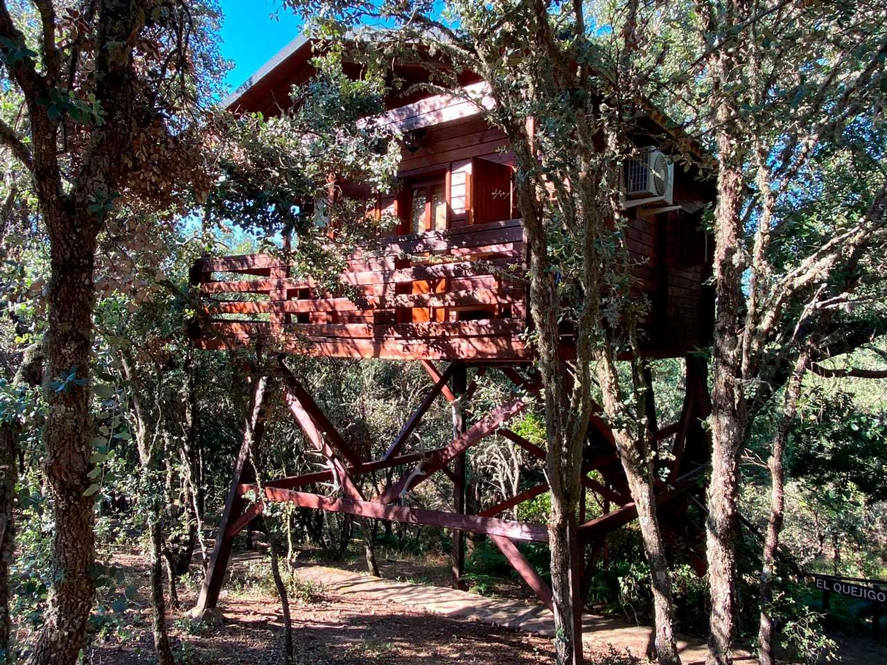 Cabaña-El-Quejigo-7