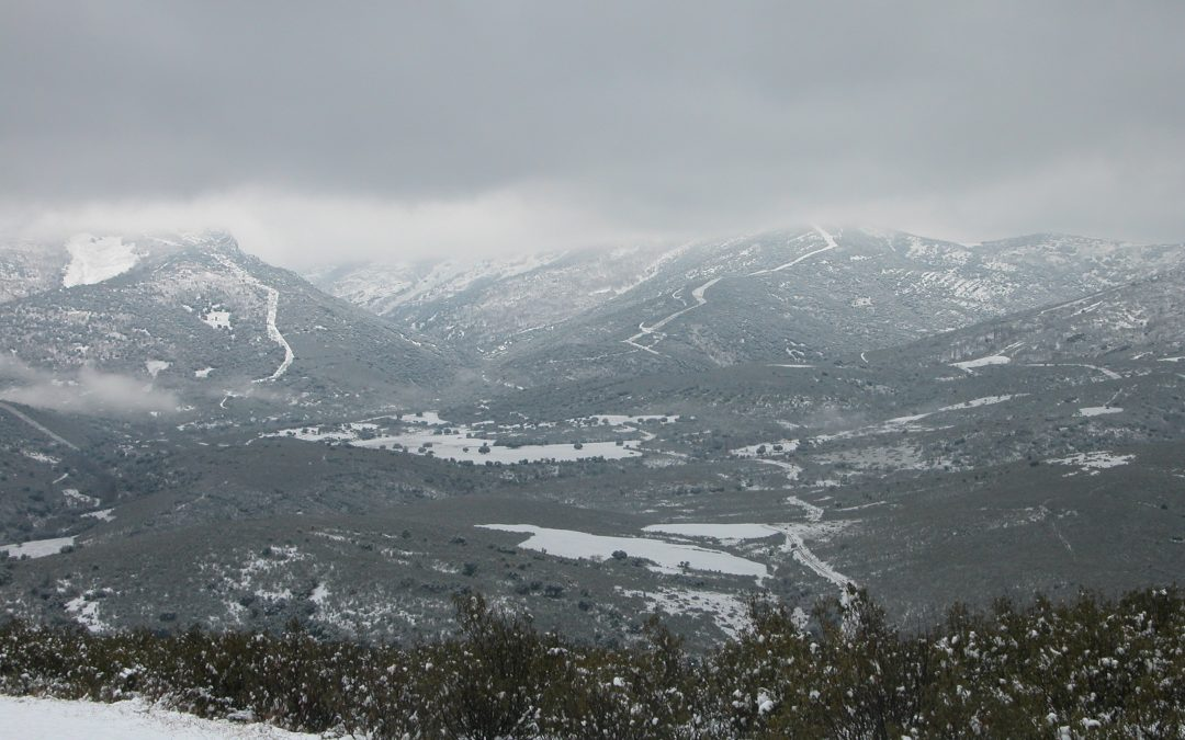 Otoño e invierno de exploradores