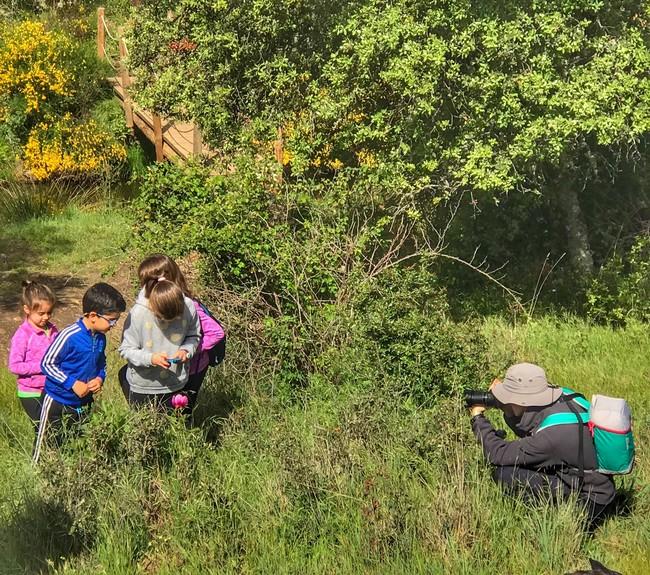 La vida salvaje en el ecolodge