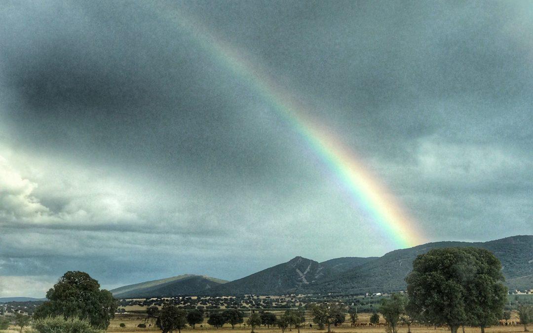 Primeras lluvias tras la estación seca nos traen colores y olores nuevos