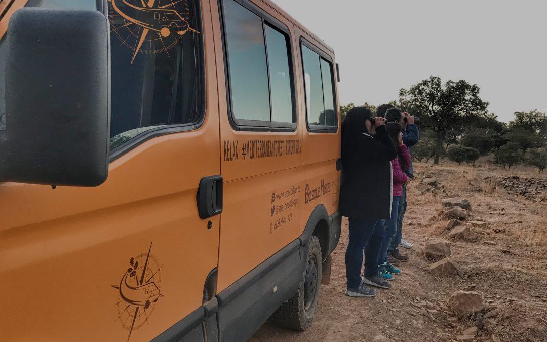 Safaris con otros ecoturistas que mejoran cualidades personales